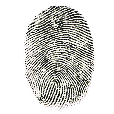 Do You Know What to Do When Involved in Identity Theft?